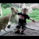 รวมคลิปชวนยิ้ม น่ารัก ซุกซน ปนฮา …เมื่อพาเด็กๆมาเที่ยวสวนสัตว์ !!!